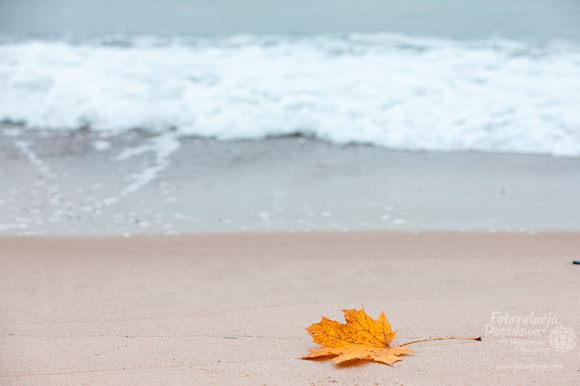 Jesień na plaży w Pustkowie