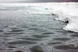 Zima na Wybrzeżu Rewalskim - Sylwester