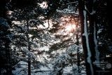 Zima w Pobierowie