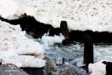 Zima w Gminie Rewal - Niechorze i Pogorzelica