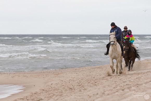 Zima nad morzem / fotorelacja.com